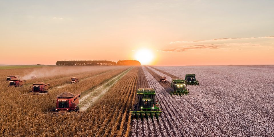 Digital4Cast: KWS And Agremo for Seed Suppliers and Growers